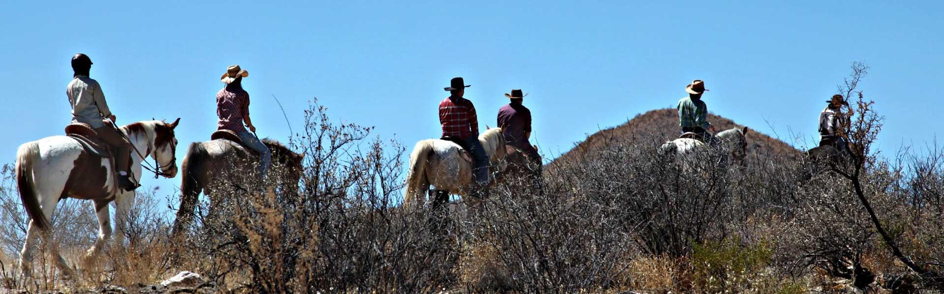 Horse trail ride & Western BBQ